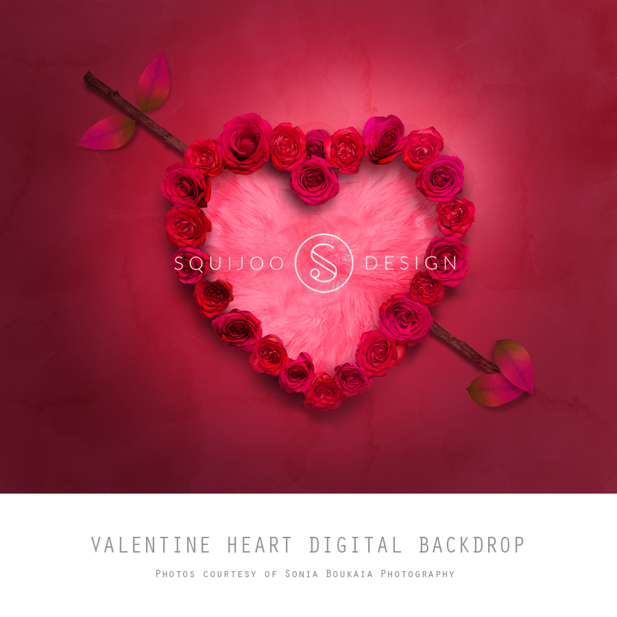 homedigital backdropsstudio - Valentines Backdrops