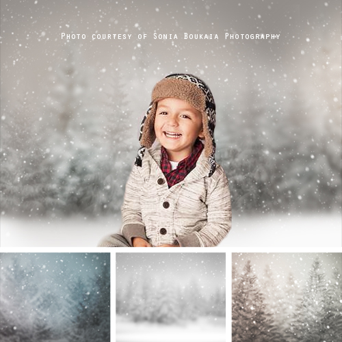 Snowy Digital Background Christmas Backdrop Frosted Baby Pine cone Branch Digital Backdrop Holiday Backdrops for Photoshop